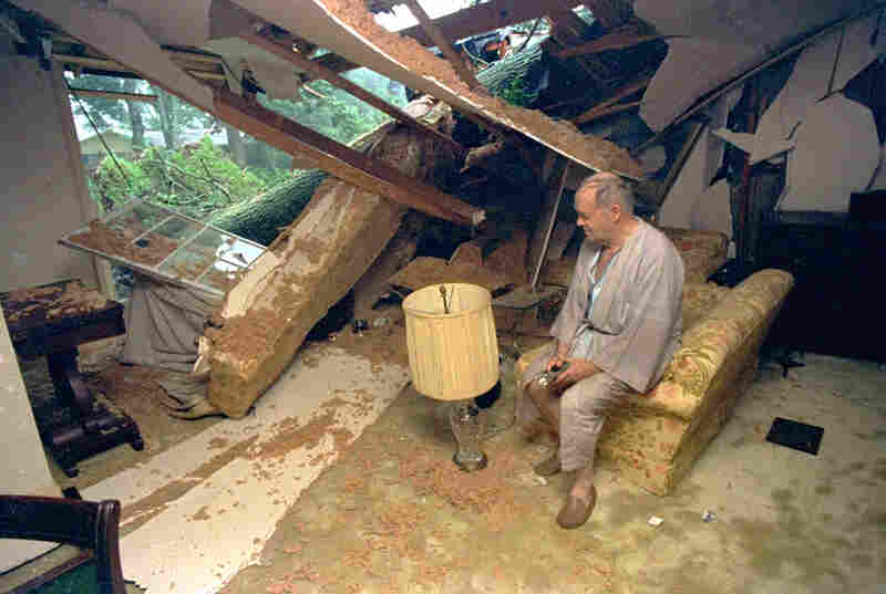 Ted Allis sits in the remains of his living room in Lafayette, La., after high winds from Hurricane Andrew knocked a tree into his home. No one was injured in the incident.