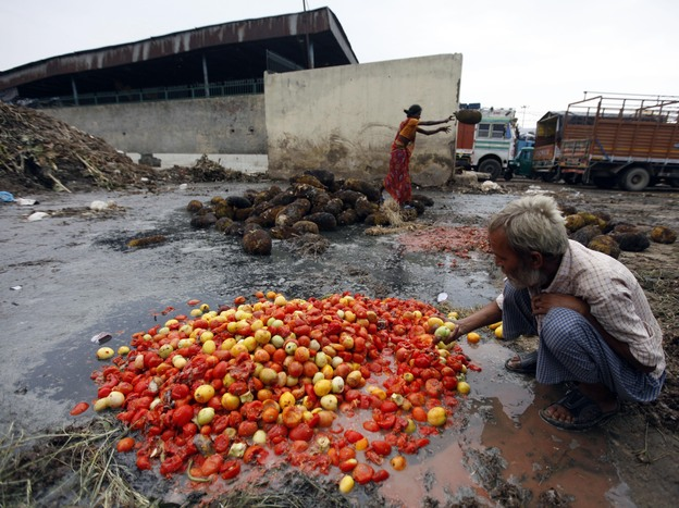 Rotten jackfruit and tomatoes are sorted at a dump in New Delhi. India loses an estimated 40 percent of its produce harvest for lack of infrastructure. And Americans waste about 40 percent of our food. (AP)