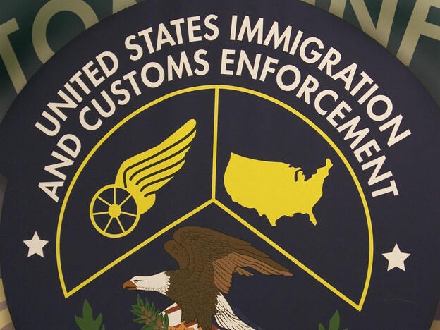 The logo of the U.S. Homeland Security Department of Immigration and Customs Enforcement Detention and Removal unit. (AFP/Getty Images)
