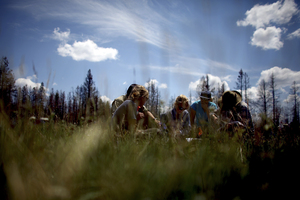 A year after the Wallow Fire, students chart every square inch of an open meadow in an area where the fire raged.