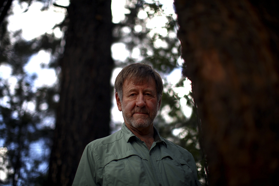 Wally Covington is director of the Ecological Restoration Institute at Northern Arizona University in Flagstaff. He helped create the 4FRI project, whose goal is to restore the natural Ponderosa pine forest. (NPR)