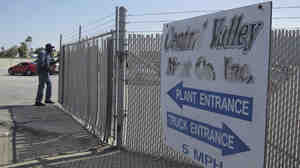 A security guard opens the gate at the Central Valley Meat Co., the California slaughterhouse recently shut down by federal regulators after they received a graphic video of cows being mistreated.