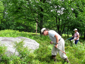 The Wilsons walk through a field in northeast Pennsylvania, looking for timber rattlers and other snakes that need to be removed.