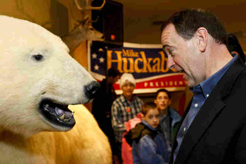 When Mike Huckabee was on the trail in Osceola, Iowa, in 2007, the one-time Republican presidential hopeful got up close to a taxidermied polar bear.