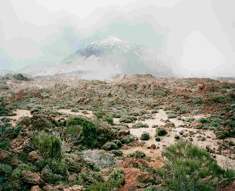 From the series In the Orbit of El Teide