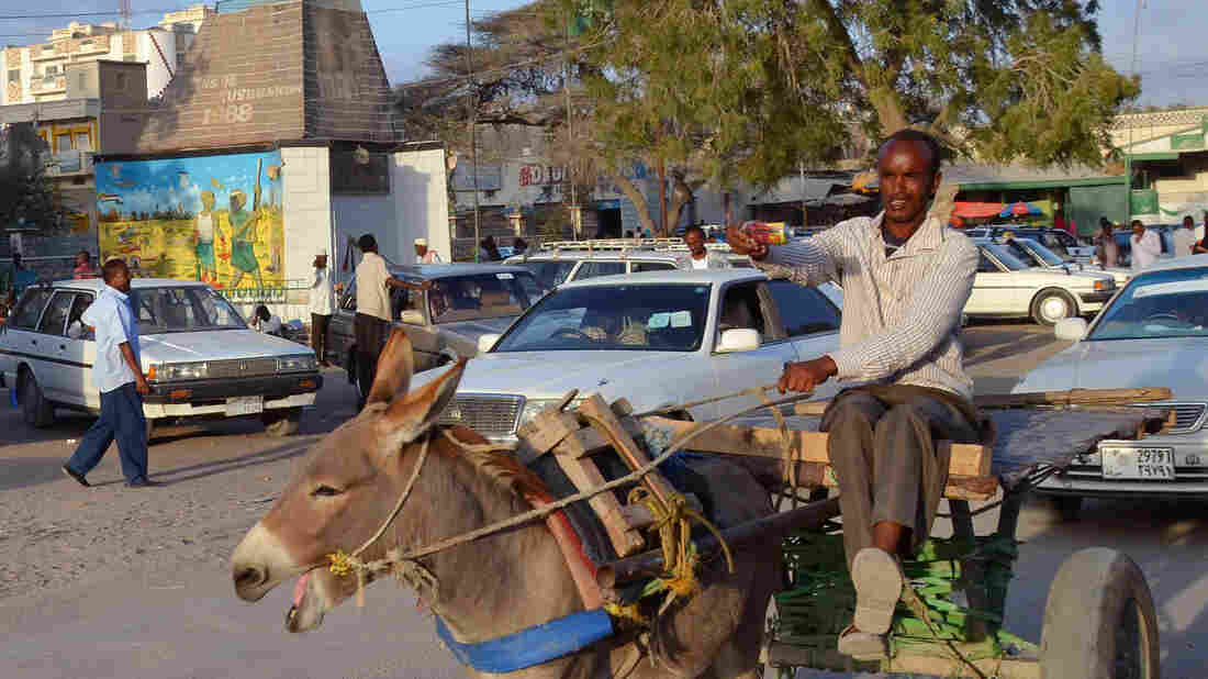 A man steers a cart pulled by a donkey in Hargeisa, capital of the unrecognized breakaway republic of Somaliland in northwestern Somalia. Investors are beginning to move into the untapped market in Somaliland, a stable island in a turbulent region.