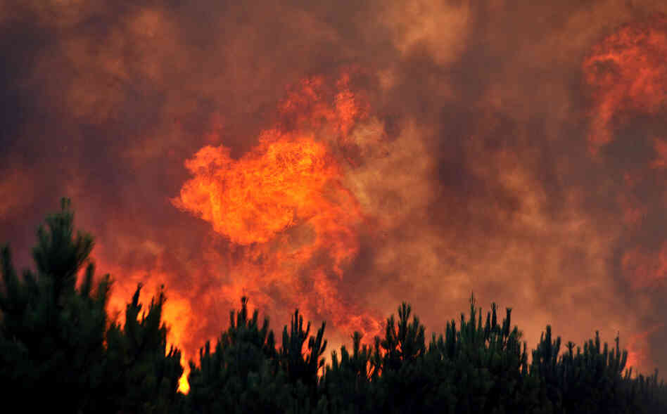 An August 2012 forest fire near the French resort of Lacanau on the country's Atlantic coast.