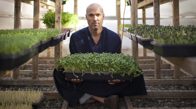 Brendan Davison grows 11 kinds of microgreens, including arugula and basil, at his Good Water Farms in East Hampton, N.Y. (Lindsay Morris)