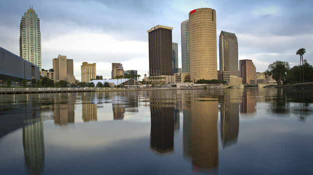 Never mind the palmetto bugs. There's a lot to like about Tampa, Fla.