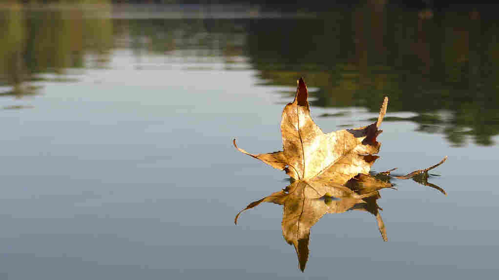 When does fall begin?