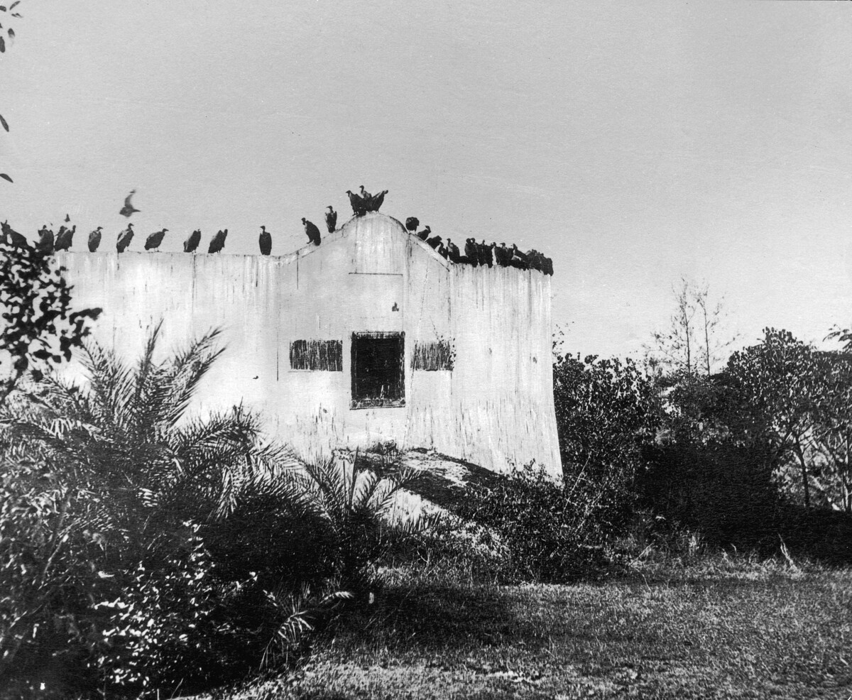 Vanishing Vultures A Grave Matter For Indias Parsis Npr House Wiring Jobs In Mumbai This Image Shows Parsi Tower Of Silence Circa 1955 Near India The Bodies Dead Are Left Here To Be Disposed By