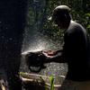 Agustin Villa cuts down a tree in the Amazon jungle, in Santa Cruz province, Bolivia, 2012.