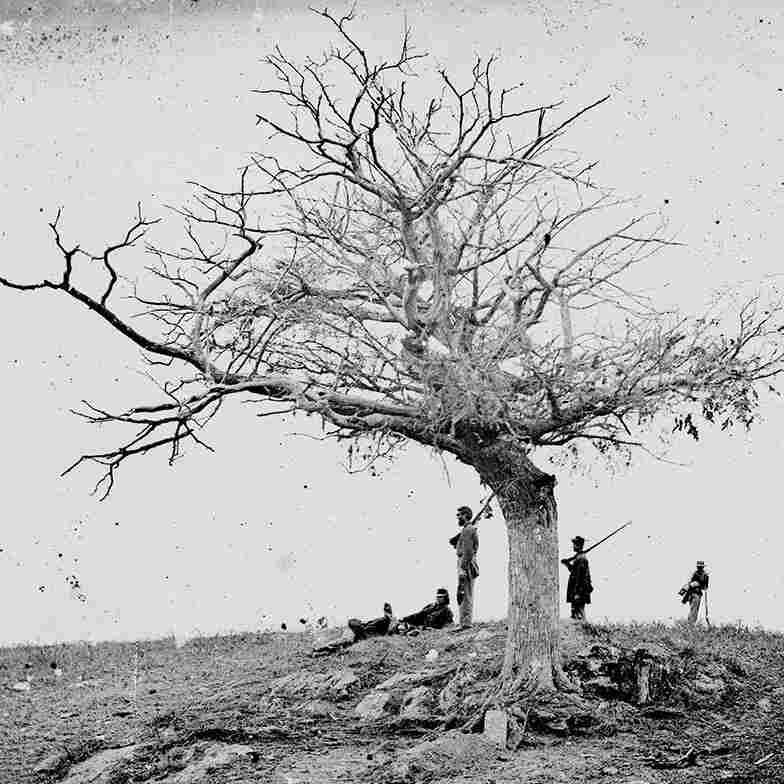 Antietam 'Death Studies' Changed How We Saw War