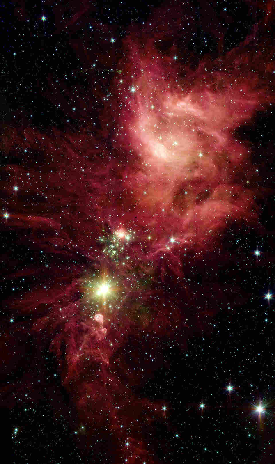 """Newborn stars, hidden behind thick dust, are revealed in this image of a section of the Christmas Tree Cluster from NASA's Spitzer Space Telescope. Star-forming clouds like this one are dynamic and evolving structures. Since the stars trace the straight line pattern of spokes of a wheel, scientists believe that these are newborn stars — or """"protostars"""" — about 100,000 years old."""
