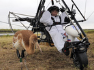 Russian President Vladimir Putin prepares to pilot a hang glider to lead a flock of cranes to their winter habitat.