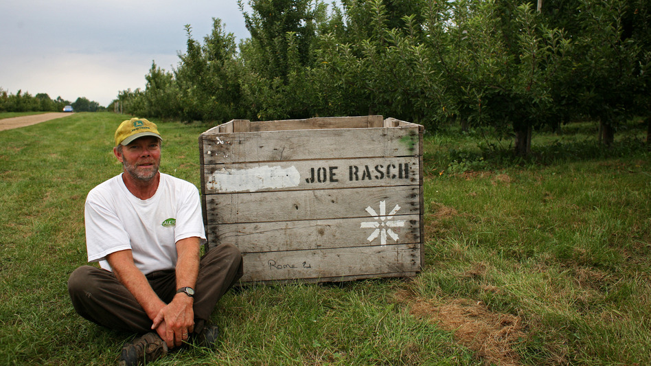 Joe Rasch has been a full-time apple grower for nearly 20 years. He says that this year, he's having trouble filling his bins. (NPR)