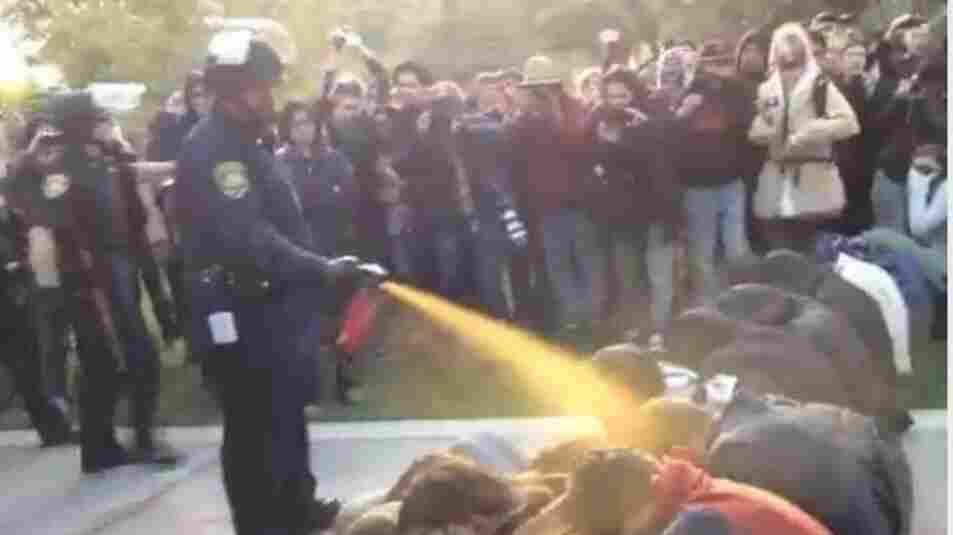 Nov. 18, 2011: Occupy protesters get sprayed at University of California Davis.