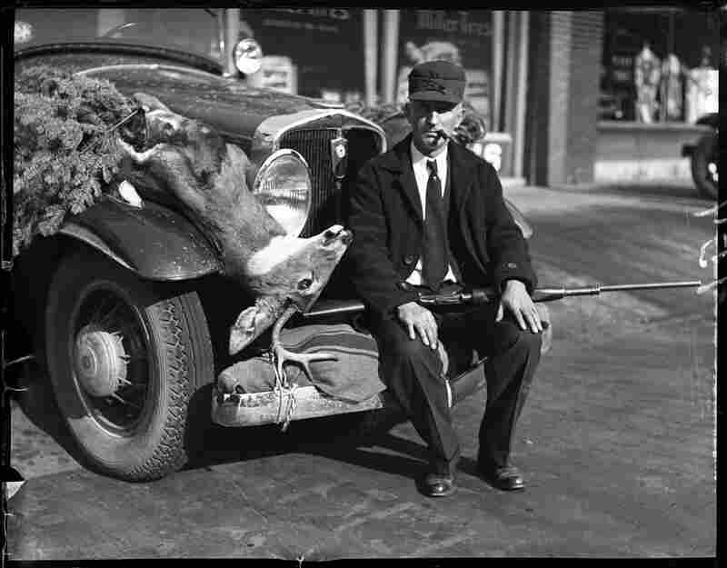 H.G. Buttrick of Springfield returned home from a hunting trip in northern Minnesota with his bounty strapped to the fender of his car. His wife, not in the picture, shot the deer that was strapped to the other side of the car, November 1930.