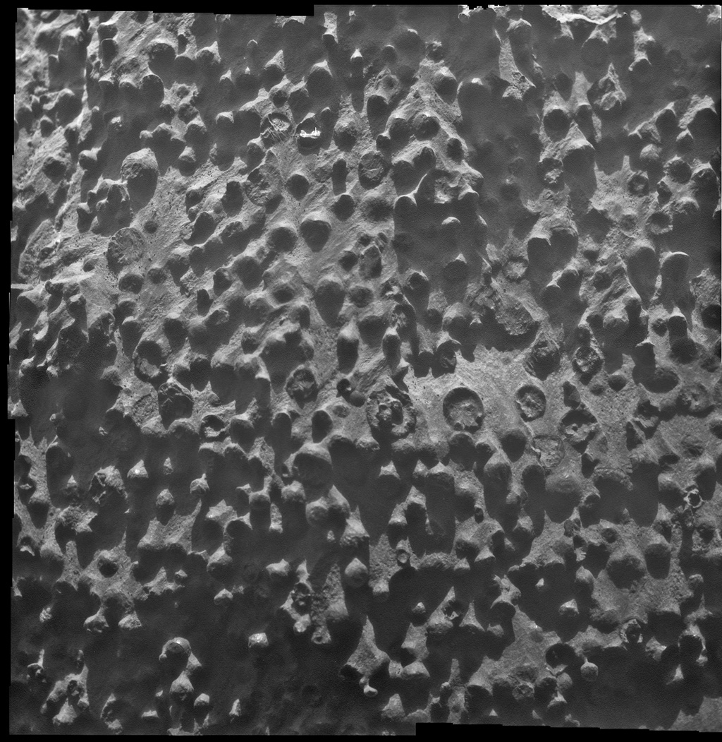 Opportunity, 2004: Opportunity discovered tiny mineral spheres -- nicknamed blueberries -- poking out of rocks that were likely formed by water.  Researchers using Opportunity's science instruments identified them as concretions rich in the mineral hematite, deposited by water saturating the bedrock.