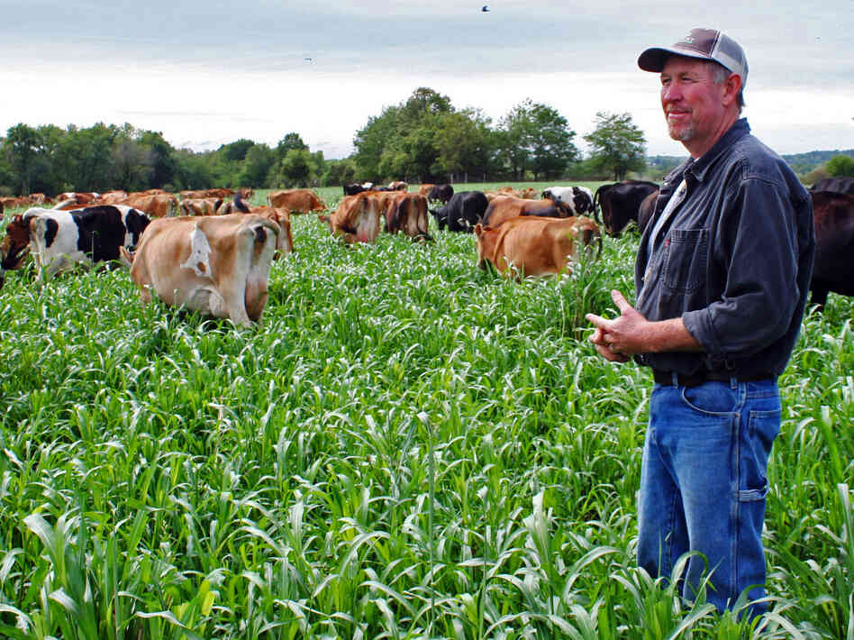 The dairy Eric Neill and his wife operate in Freeman, Mo., nearly went under this summer, crushed by high feed prices from drought-scarce grains. The farm was saved by restorative rains brought by Hurricane Isaac.