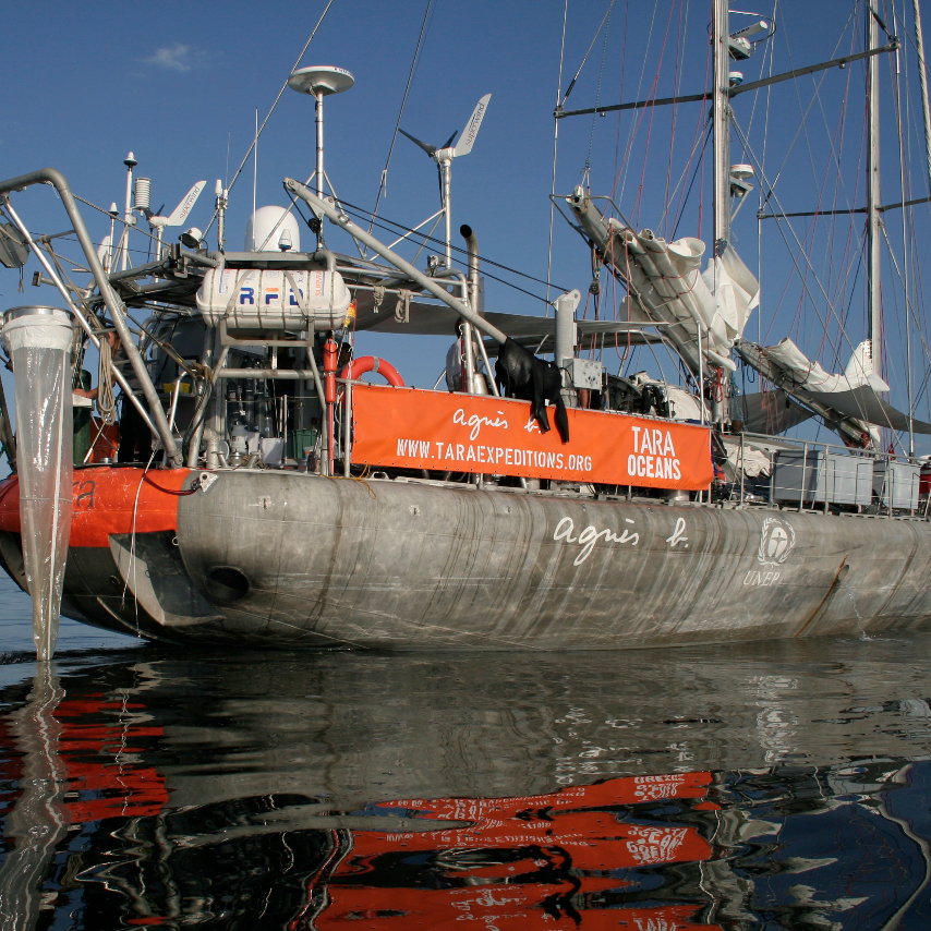 The 118-foot research schooner Tara made an around-the-world expedition over 21/2 years. Scientists aboard discovered up to a million new species of plankton. Now begins the work of determining how climate change might be affecting these microorganisms.