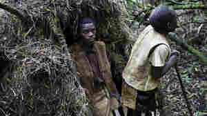 Forest People Return To Their Land ... As Tour Guides
