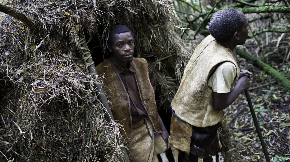 In 1991, the Batwa forest people of Uganda were evicted from their land when two national parks were created to protect the shrinking habitat of the endangered mountain gorilla. A new program is trying to help them earn money and reconnect with their roots. (Mackenzie Knowles-Coursin for NPR)