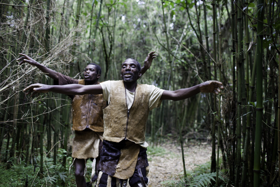 Intimately tied to the mountains and forests, the Batwa used to perform daily dances in honor of their land. Entering their previous home, men perform a welcoming dance. (Mackenzie Knowles-Coursin for NPR)
