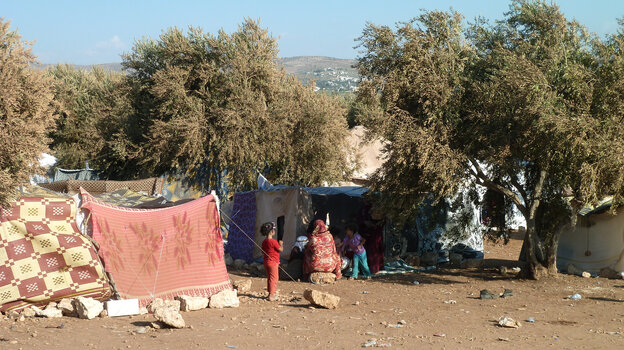 Syrian refugees gather amid olive trees in an area controlled by the rebel Free S