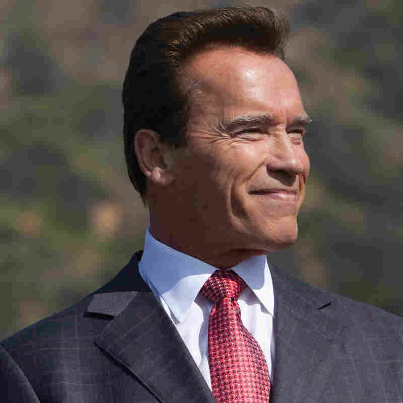 Schwarzenegger's 'Total Recall' Of His Life, So Far