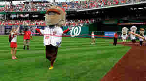 Teddy Wins! Washington Nationals Mascot Snaps 525-Game Losing Streak