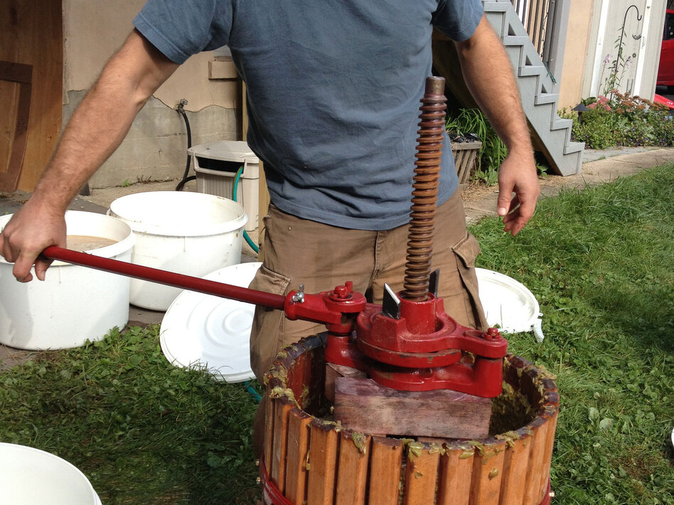 DIY winemaker John Virtue presses the grapes in a Middletown, Conn., backyard. (NPR)