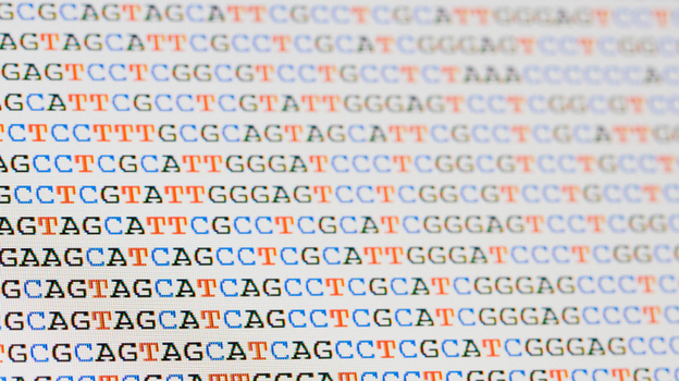 Each strand of DNA is written in a simple language composed of four letters: A, T, C and G. (iStockphoto.com)