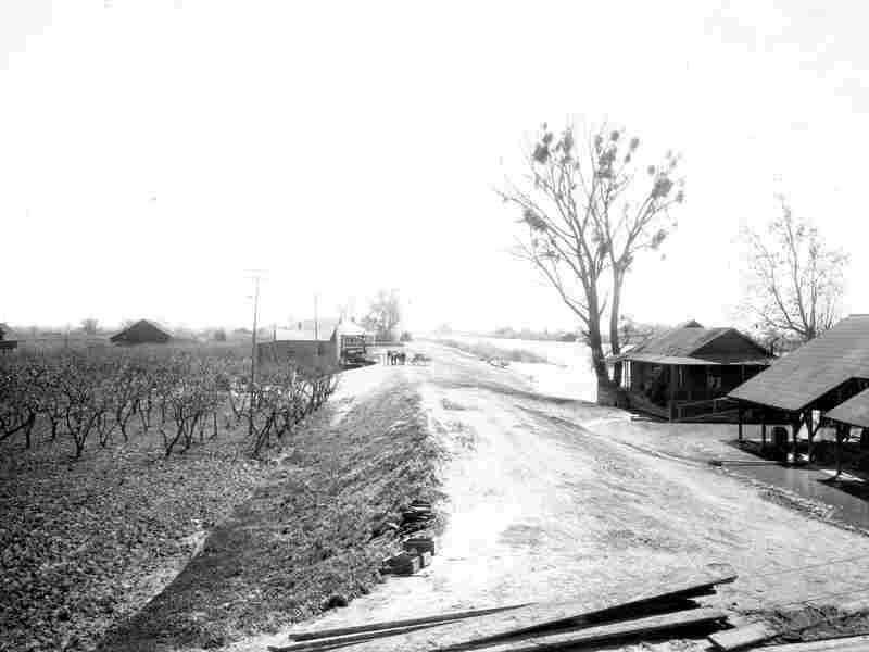 A man-made levee separates a settlement in the delta from the Sacramento River in 1906.