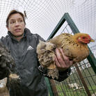 When a case of the potentially lethal H5N1 bird flu was found in British poultry in 2007, Dutch farmers were told to keep their poultry away from wild birds by closing off outdoor areas with wire mesh.