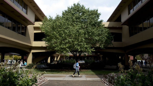 A student walks through the quad at Colorado State University in Fort Collins. (NPR)