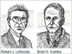 This year's winners of the Chemistry Nobel: Robert Lefkowitz (left) and Brian Kobilka.