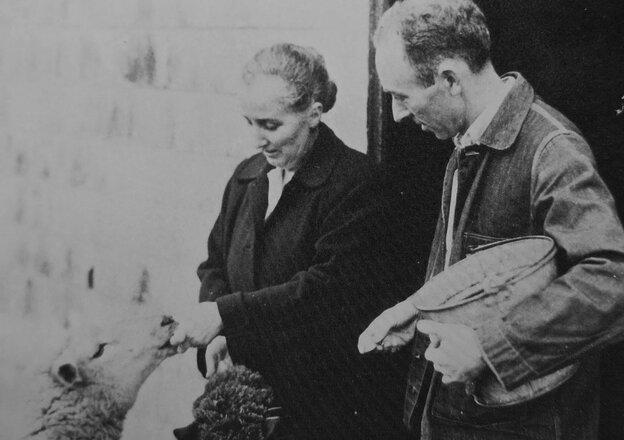 E.B. White and his wife, Katharine Angell, feed sheep on their Maine farm.