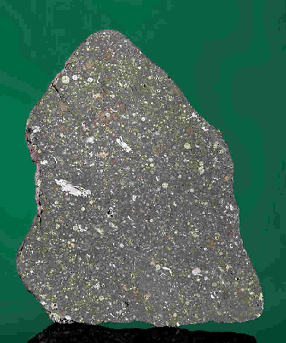 Touch Stardust: A slice of the Allende meteorite that fell in Chihuahua, Mexico, in 1969. It contains white calcium-aluminum inclusions, material present at the birth of our solar system.