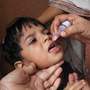 An Indian child receives the oral polio vaccine. Twice a year, an army of 2 million volunteers fans out across India to administer the vaccine. India has not reported a single case of polio in more than a year-and-a-half.