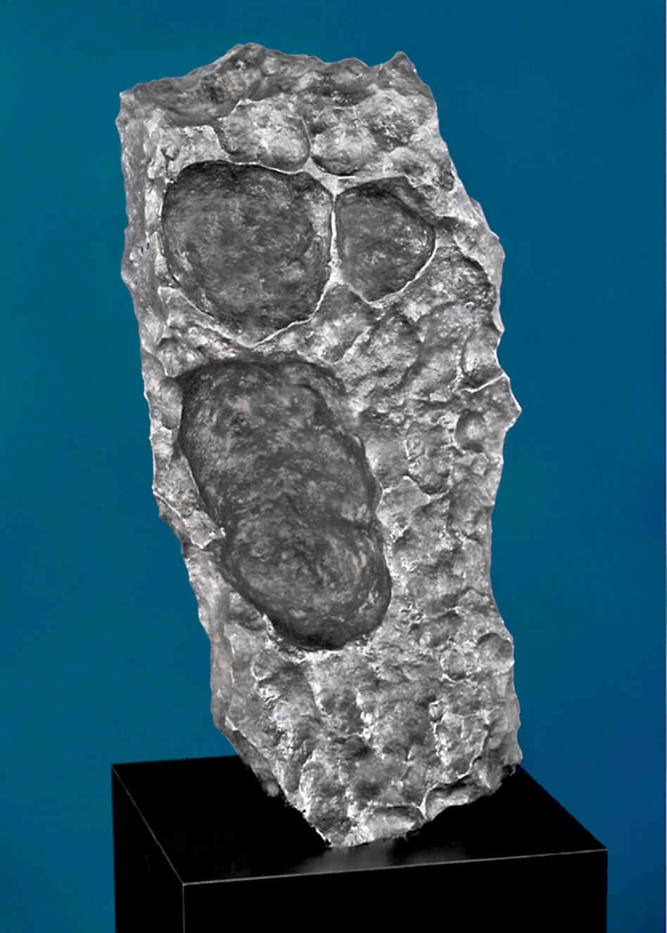 The Scream? Meteorites can take oddly familiar shapes. This one has echoes of Edvard Munch's famous painting. The Gibeon meteorite chunk was found in Namibia. Estimated price: $175,000-$225,000.
