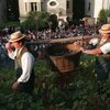 Crowds watch as Clos Montmartre's grapes are harvested during its annual October wine festival.