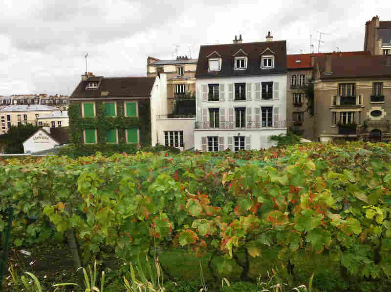 Clos Montmartre is about the size of a city block.