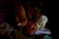 A child is vaccinated against polio at the Minjibir health clinic. The procedure, in which two drops of vaccine are pinched into a child's mouth, only takes a few seconds. Children should get at least three doses of the vaccine, spread out over time.