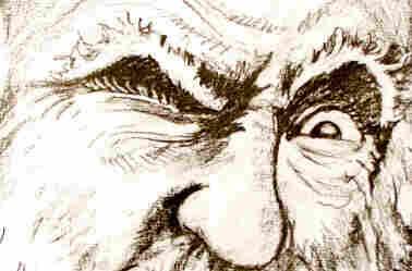 Darwin eyes
