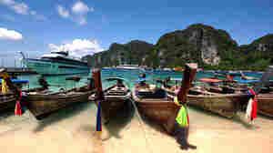 Tourist Deaths Raise Poison Expert's Suspicions