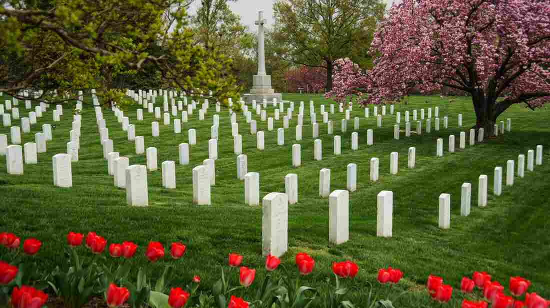 Headstones in Arlington National Cemetery last March. The new online database should make it easier to find specific graves.