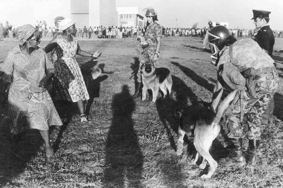 Soweto, 1980.