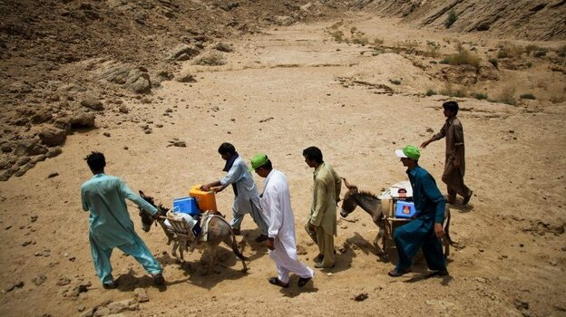 Health workers transport the polio vaccine by donkey in sout