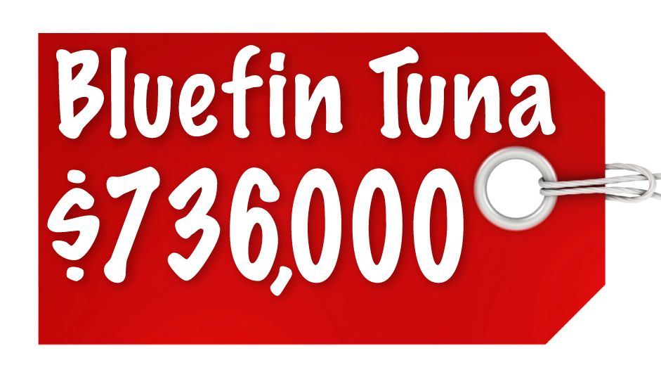 Bluefin Tuna $736,000